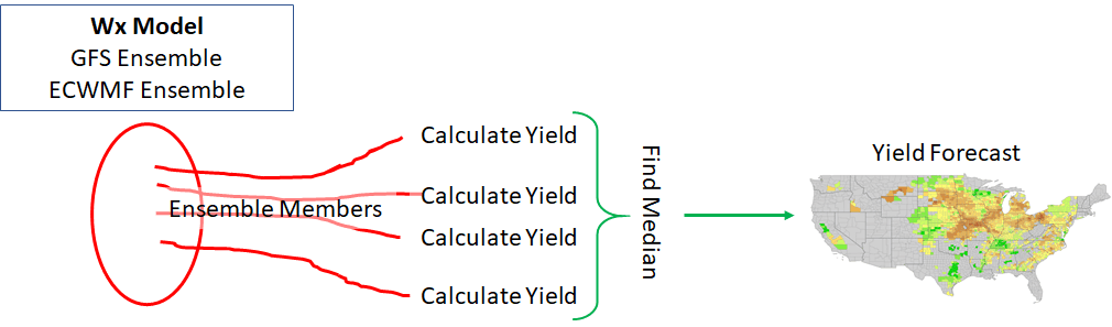 Diagram of the ensemble weather model corn yield forecast process