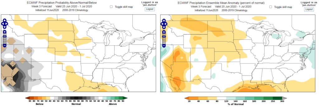 World Climate Service ECMWF Week 3 Precipitation Forecast