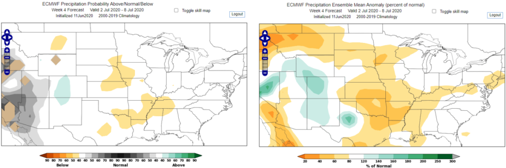 World Climate Service ECMWF Week 4 Precipitation Forecast